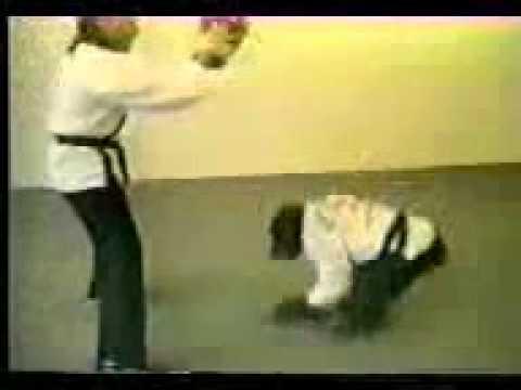обезьяна которая умеет драться