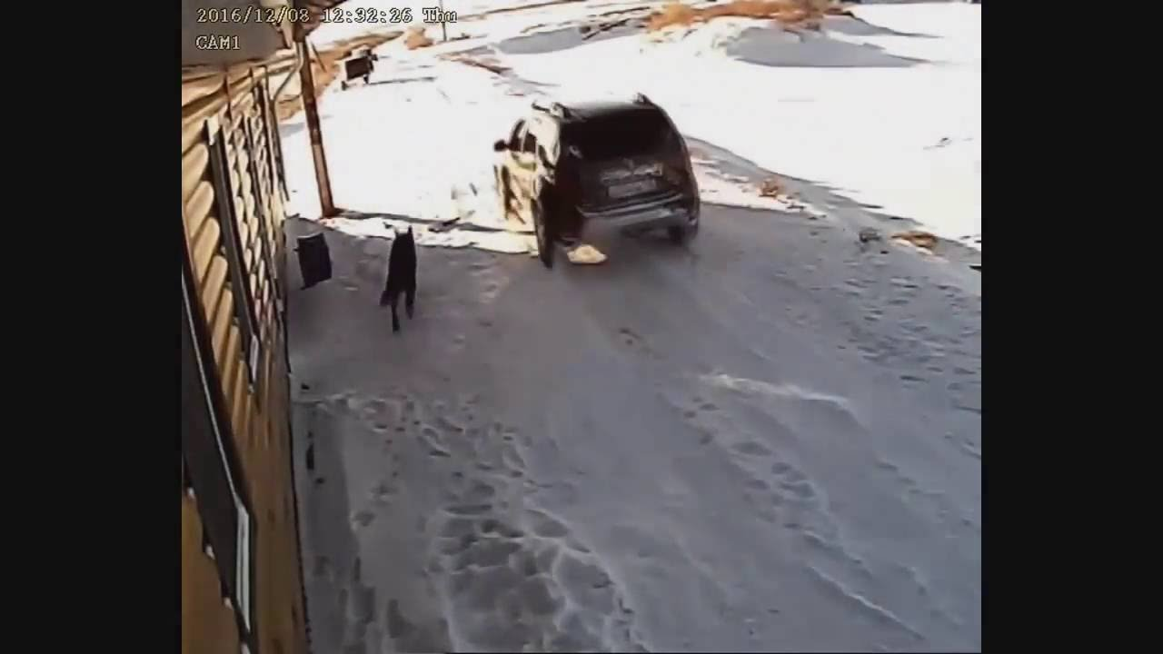 Кинокомпания «Башкиррыбхоз продакшн» представляет…