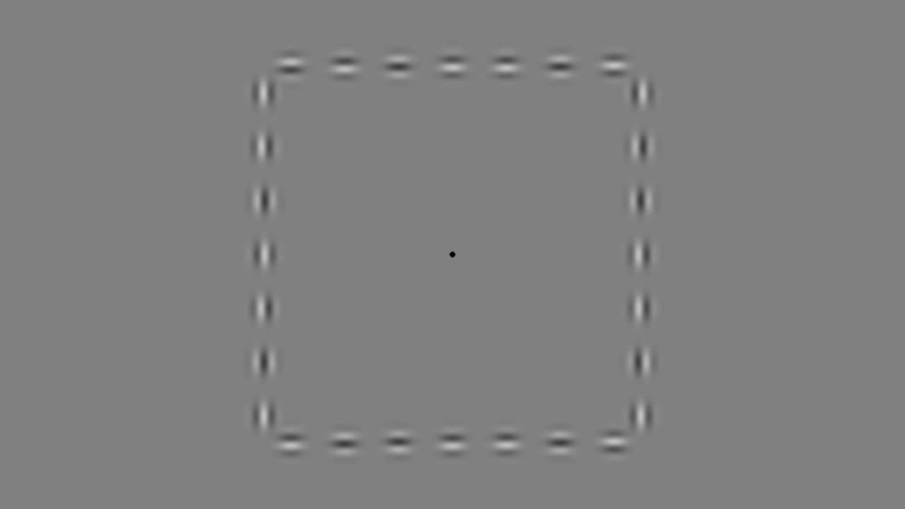 Лучшие оптические иллюзии 2016 года