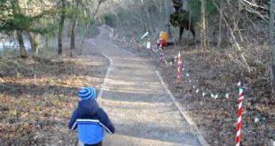 Малыш в парке где есть монстры