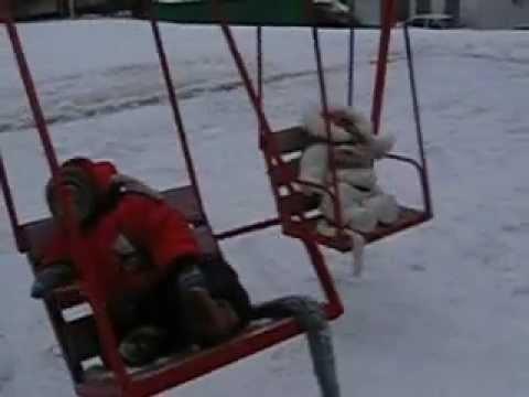 обезьяны зимой