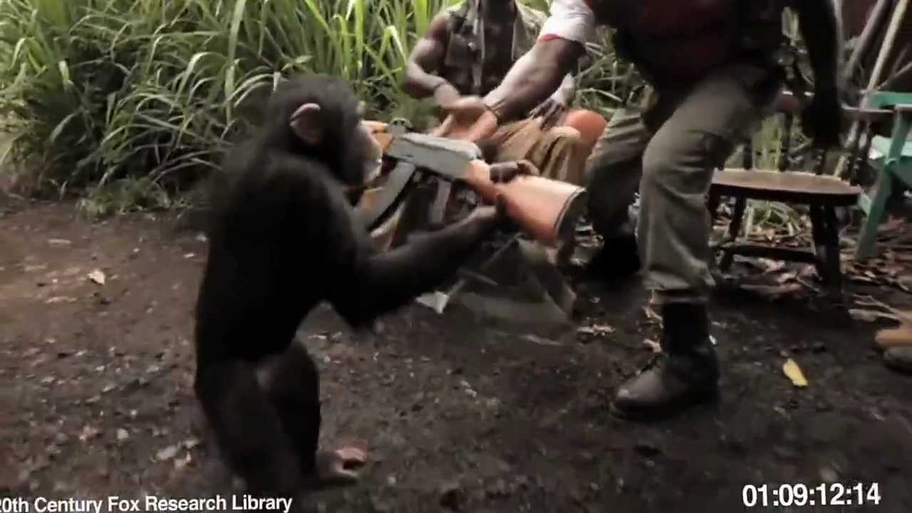 солдаты надсмеивались над обезьяной и дали ей автомат калашникова